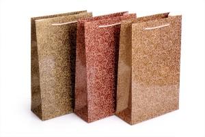 Mẫu túi giấy in làm từ giấy duplex (2)