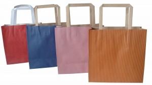 Mẫu túi giấy in làm từ giấy duplex (4)
