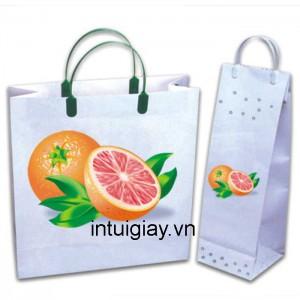Mẫu túi xách đẹp mang thương hiệu đẳng cấp (2)