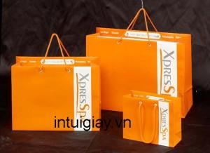 Mẫu túi xách đẹp mang thương hiệu đẳng cấp (6)