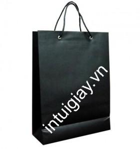 Túi giấy cao cấp giá rẻ