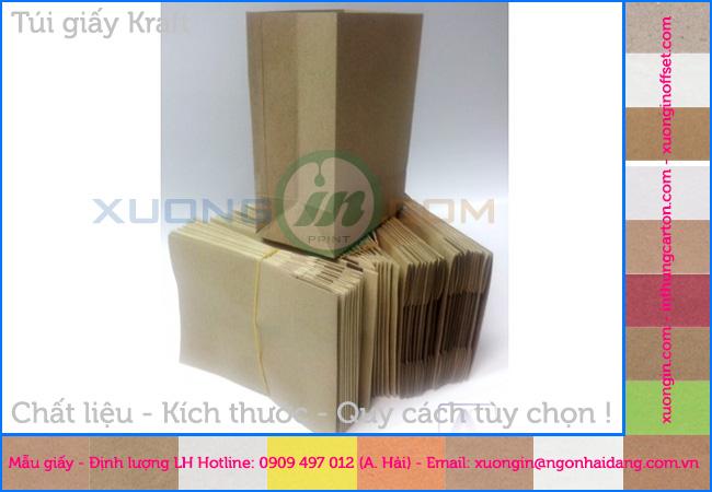 Túi giấy kraft