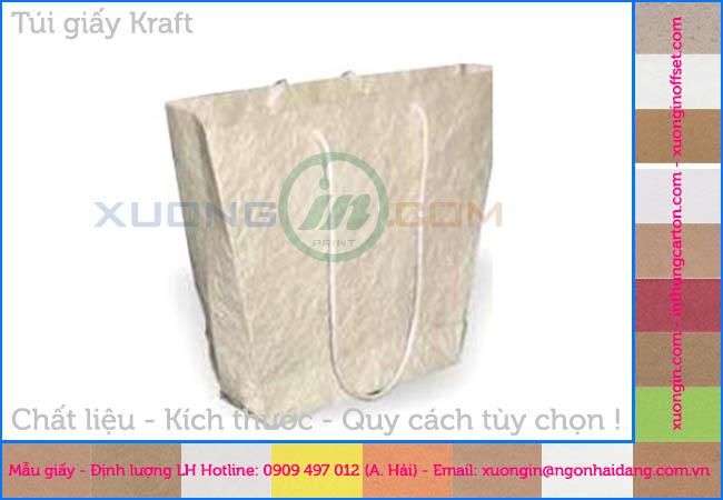 Bộ túi giấy mẫu cao cấp mới nhất 2014