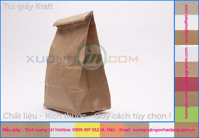 In túi giấy kraft giá rẻ hcm