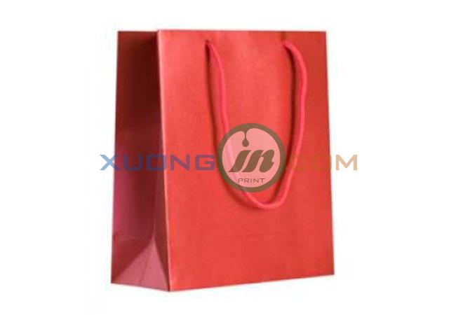 Túi giấy cao cấp 2014